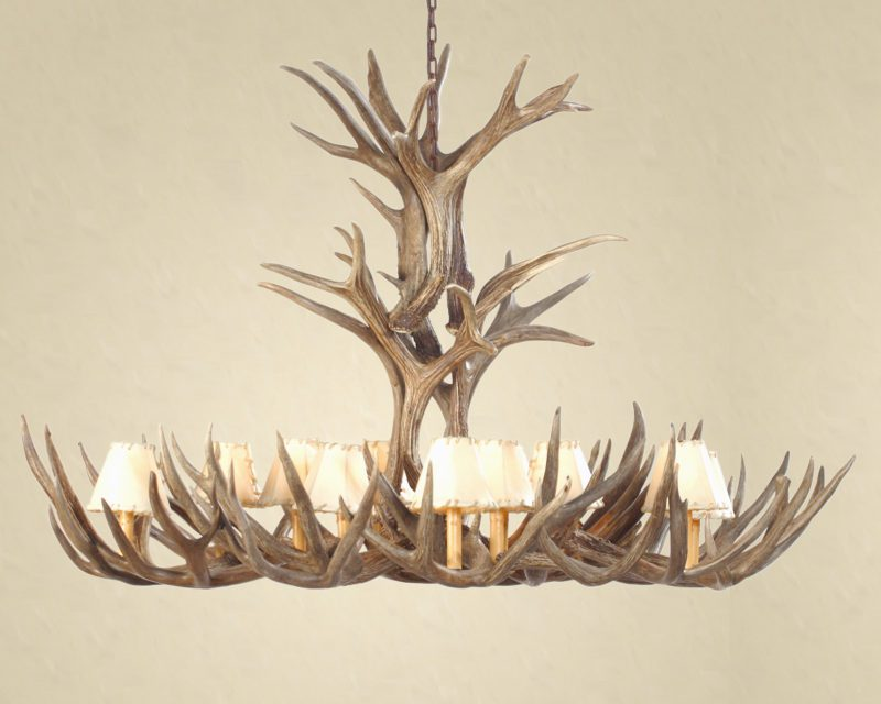 Essentials to know before you buy an antler chandelier arubaitofo Image collections