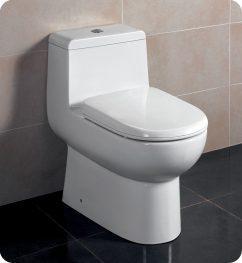 Antila One Piece Dual Flush Toilet with Soft Close Seat