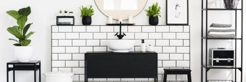 white bathroom with plants