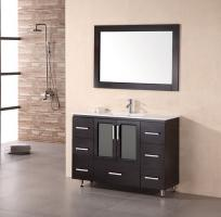 48 Inch Modern Single Sink Bathroom Vanity in Espresso Finish